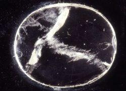Nimrud Lens 3000 years old First Telescope
