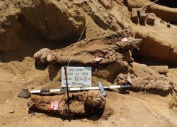One Million Mummies unearthed in Egypt Cemetery