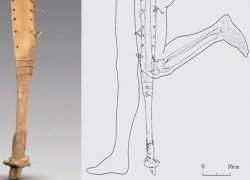2200 years old Prosthetic Leg discovered in Chinese Tomb
