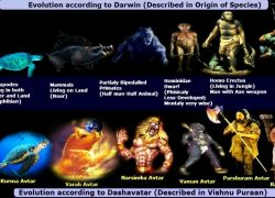 Vishnu Dasavatar and Darwin Evolution Theory of Man