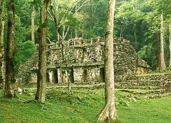 Mayan City Yaxchilan (Yaksha-Sila), in Mexico – Indian Connection
