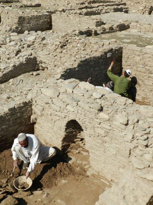 Barikot Ghundai Pakistan Vishnu Temple Archaeology