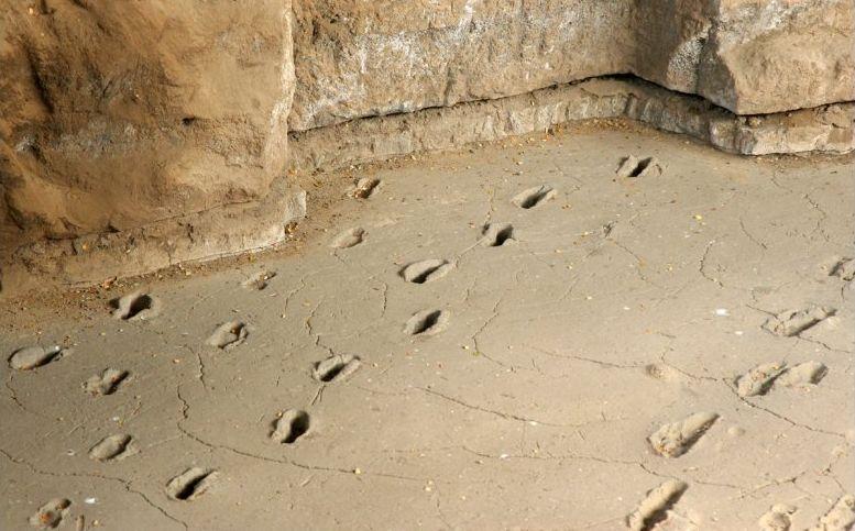 Acahualinca Footprints in Nicaragua