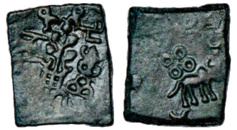 Malwa Coins Bhumiputra