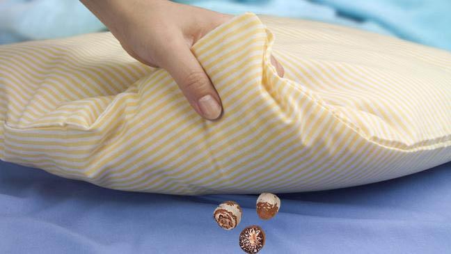 Newar Woman Divorce Man by Areca Nut under Pillow