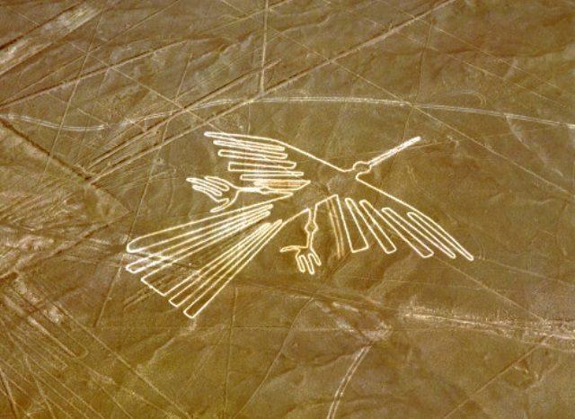 nazca lines eagle shaped